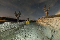 Droge bomen bij nacht Royalty-vrije Stock Foto's