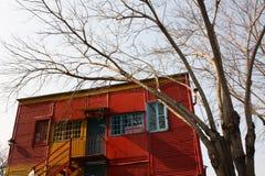 Droge boom, kleurrijk huis Stock Afbeelding
