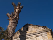 Droge boom met oud verspreid huis Royalty-vrije Stock Foto's