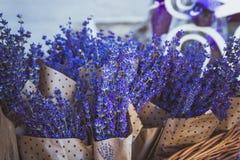 Droge bossen van lavendel het hangen op koord royalty-vrije stock afbeeldingen