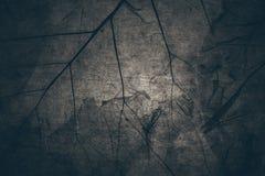 Droge bruine de textuurachtergrond van het de herfstblad in uitstekende donkere dark aan Stock Foto