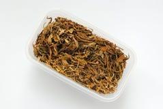 Droge cannabis in plastic doos Royalty-vrije Stock Afbeelding