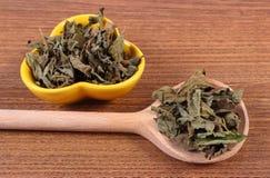 Droge citroenbalsem met lepel en kom op houten lijst, herbalism stock afbeelding