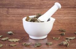Droge citroenbalsem in wit mortier, concept herbalism en alternatieve geneeskunde stock afbeeldingen