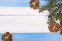 Droge citroenen en een tak van een boom Royalty-vrije Stock Afbeelding