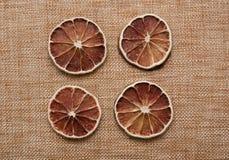 Droge citrusvruchten Royalty-vrije Stock Afbeeldingen