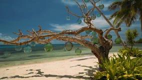 Droge die boom met glasbollen wordt verfraaid op wit zandstrand, Filippijnen stock videobeelden