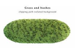 Droge die gras en struiken op witte achtergrond wordt geïsoleerd Royalty-vrije Stock Foto