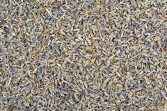 Droge die lavendelbloemen op de lijst worden bestrooid Stock Afbeeldingen