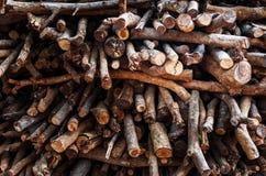 Droge die takken voor brandhout worden gemaakt Royalty-vrije Stock Afbeeldingen