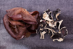 Luxueuze het oorachtergrond van donkere Jood. Royalty-vrije Stock Afbeeldingen