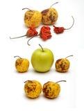 Droge en verse appel met droge peper Royalty-vrije Stock Afbeelding