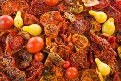 Droge en verse tomaten Royalty-vrije Stock Afbeeldingen