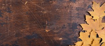 Droge esdoornbladeren op oud ruimte de Herfstconcept grunge houten van het achtergrondtextuurexemplaar stock fotografie