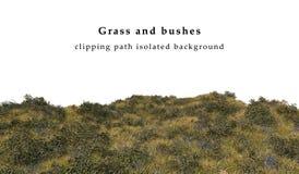 Droge geïsoleerd gras en struiken Royalty-vrije Stock Afbeeldingen