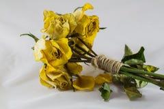 Droge gele rozen Stock Foto's