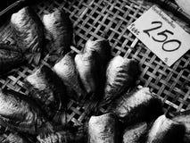 Droge Gourami vissen. Royalty-vrije Stock Foto's