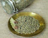 Droge groene paprika Royalty-vrije Stock Afbeeldingen