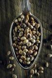 Droge hennepzaden in een lepel stock fotografie