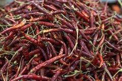 Droge hete Spaanse peper bij Mexicaanse markt Royalty-vrije Stock Fotografie