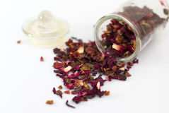 Droge hibiscus Royalty-vrije Stock Afbeeldingen