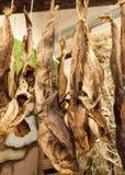 Droge Kabeljauwvissen in IJsland Stock Afbeelding