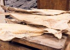 Droge Kabeljauwvissen in IJsland Royalty-vrije Stock Fotografie