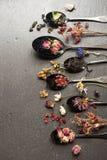 Droge kruiden, bessen en bloemen en verschillende op smaak gebrachte thee Royalty-vrije Stock Fotografie