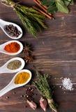 Droge kruiden en groene kruiden Stock Foto's