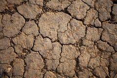 Droge land onvruchtbare gebarsten textuur Royalty-vrije Stock Foto