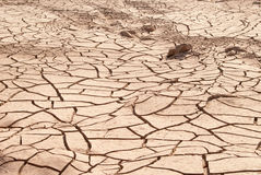 Droge landtextuur in woestijn. royalty-vrije stock afbeelding