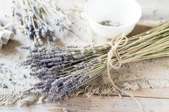 Droge Lavendel Stock Afbeeldingen