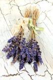 Droge lavendel Royalty-vrije Stock Fotografie