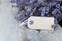 Droge lavendel Stock Foto