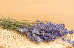 Droge Lavendel Royalty-vrije Stock Afbeelding
