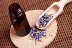 Droge lavendelbloemblaadjes met gemacereerde olie stock foto