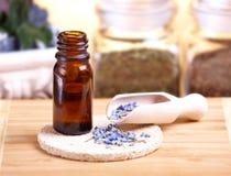 Droge lavendelbloemblaadjes met gemacereerde olie royalty-vrije stock afbeelding