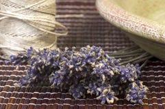 Droge lavendelbos stock foto