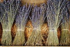 Droge lavendelbossen Royalty-vrije Stock Fotografie