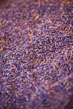 Droge lavendelhoop Royalty-vrije Stock Foto's