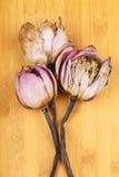 Droge lotusbloem dichte omhooggaand Stock Foto's