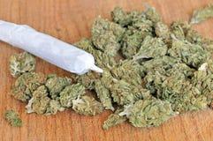 Droge marihuanaknoppen Stock Afbeelding