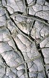 Droge modder Stock Foto's