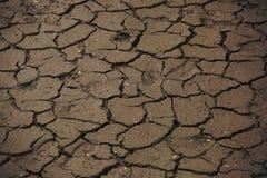 Droge modder dichtbij het rivier droge jaar Stock Foto's