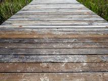 Droge modderige dierlijke voetafdrukken van wasbeer, herten, opossa en meer op een houten dok stock foto