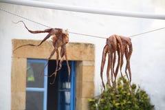 Droge Octopus in de Centrale Markt van Hongkong Stock Foto's