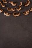 Droge paddestoelen op een grijze achtergrond Stock Foto