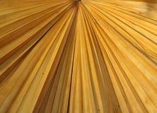 Droge palmbladentextuur Stock Fotografie