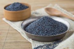 Droge papaverhoofden en zaden Blauwe papaver royalty-vrije stock afbeelding