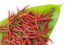 Droge peper voor het koken Stock Foto's